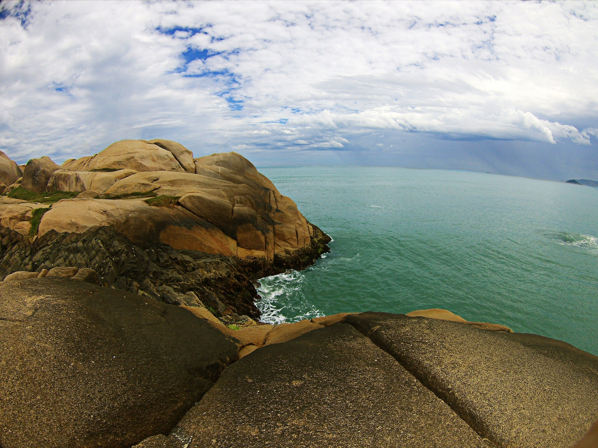 Preserve a biodiversidade de Florianópolis